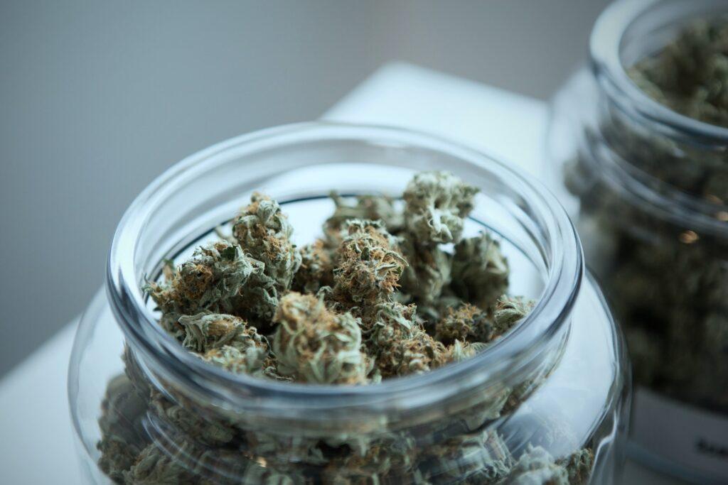 cannabis buds in a jar