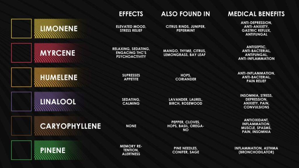 common terpenes and their properties
